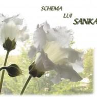 Carte – Schema lui Sankaran – Rajan Sankaran